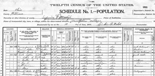 700 COOK 1900 census