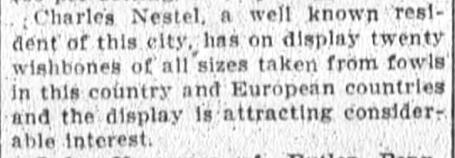 1910 Dec 16 NESTEL Charles POULTRY SHOW Fort Wayne News Sentinel