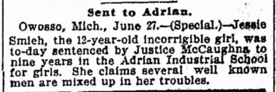 1898 Jun 28 ADRIAN HOME Detroit Free Press