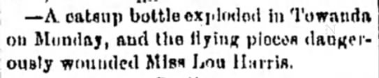1885 Aug 13 HARRIS Lou INJURED Lebanon Daily News Lebanon PA